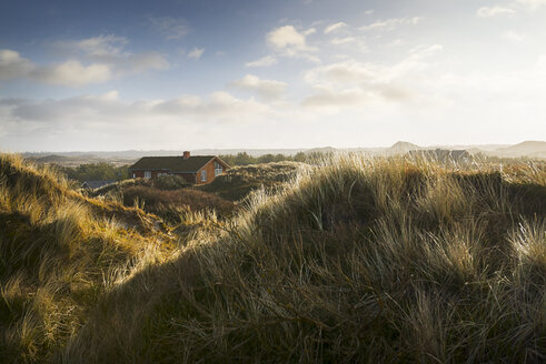Denmark, Henne Strand, House in the grass dunes - BMA000179