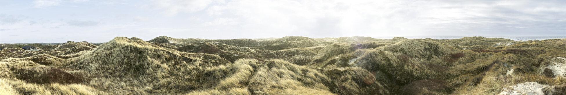 Denmark, Henne Strand, Dune landscape - BMA000218