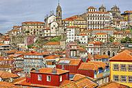 Portugal, Porto, cityview with Clerigos Church - DSGF001118