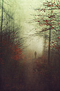 Silhouette of man walking in an autumnal forest - DWIF000707