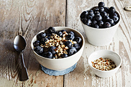 Bowl of porridge with blueberries - EVGF002881