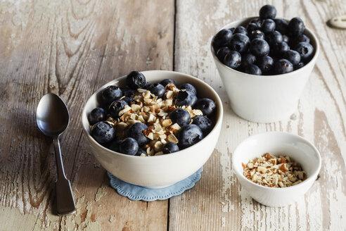 Bowl of porridge with blueberries - EVGF002881