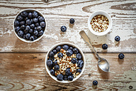 Bowl of porridge with blueberries - EVGF002887