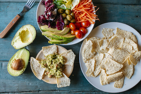 Avocados, guacamole, nachos and mixed salad - KIJF000277