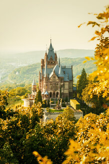 Germany, Bonn, Drachenburg Palace, Dragon's Rock in autumn - TAM000455