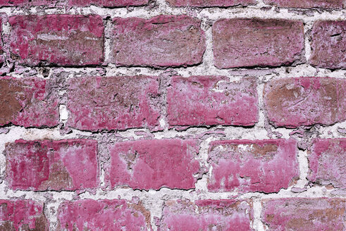 Brick wall with flaking pink colour, close-up - LCF000010