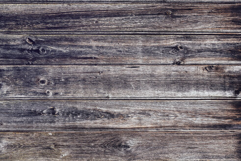 Weathered bars, close-up - LCF000013