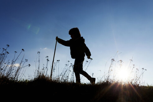 Silhouette of little boy walking on a meadow at backlight - VABF000399