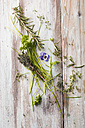 Different fresh herbs and edible flower on wood - MYF001444