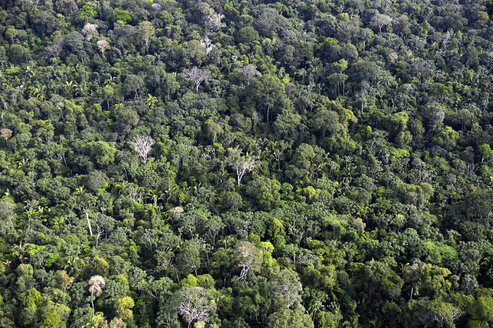 Brazil, Para, Amazon rainforest, aerial view - FLKF000665