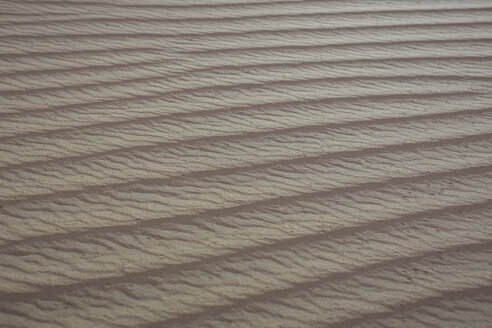 UAE, Rub' al Khali, ripple marks in the desert sand - MAUF000387