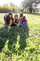 Three girls on a meadow picking daisies - MGOF001714