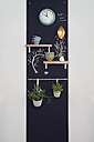 Wall decoration with shelves and herbs on blackboards with lamp and clock - OPF000110