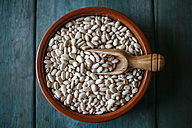 Bowl of dried white beans on wood - KIJF000301