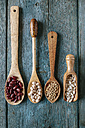 Row of four different wooden spoons with various pulses - KIJF000307