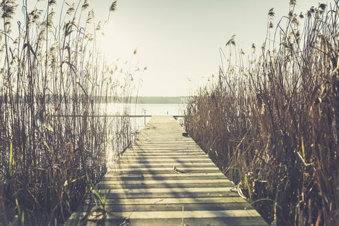 Germany, Brandenburg, Teupitz, Lake Teupitz, Reed and wooden boardwalk - ASCF000565