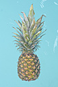 Pineapple in the pool - RTBF000105
