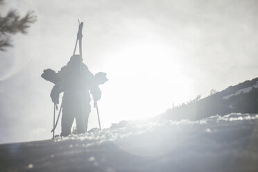 Backlighting of a man with skis in a backpack - ABZF000354