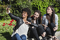 Three girl friends sitting on grass taking selfie with smart phone - MAUF000442