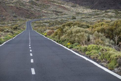 Spain, Tenerife, empty road in El Teide region - SIPF000382