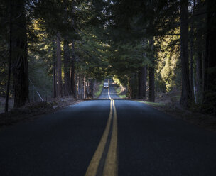 USA, California, Orr Springs Road, car - STCF000218