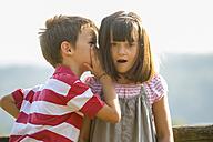 Little boy whispering secret in the ear of his girlfriend - ZOCF000108