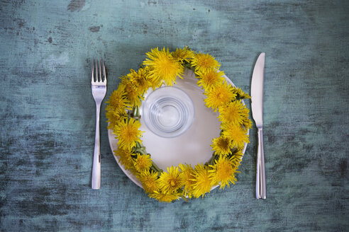 Wreath of dandelions on plate - MYF001468