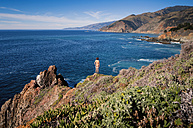 USA, California, Big Sur, Coast, Rear view of nude man standing on rock - WV000754
