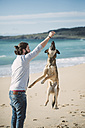 Man playing with his mongrel on the beach - RAEF001148