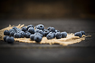 Blueberries on jute and wood - MAEF011466