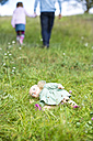 Doll lying on meadow while man going away with little girl - MAEF011552
