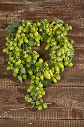 Ripe hops on wood - MAEF011591