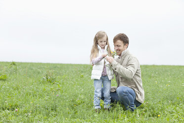 Father and daughter picking wildflowers in meadow - MAEF011626