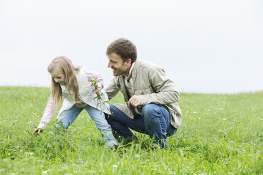 Father and daughter picking wildflowers in meadow - MAEF011632