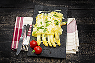 Cannelloni filled with white asparagus, gratinated with cheese on schist plate - MAEF011651