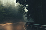 Empty country road in fog - BZF000279