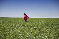 Back view of little girl walking in a green field - ERLF000171