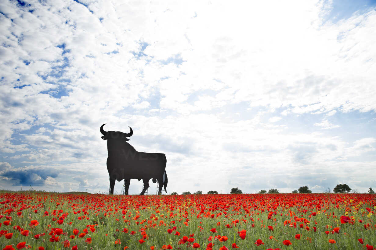 Bull shaped sign in poppy field, Spain, Toledo - ERL000173 - Enrique Ramos/Westend61