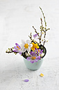 Twigs of wild plum and crocus in cup - MYF001480