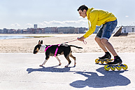 Inline-skater with his bull terrier - MGOF001844