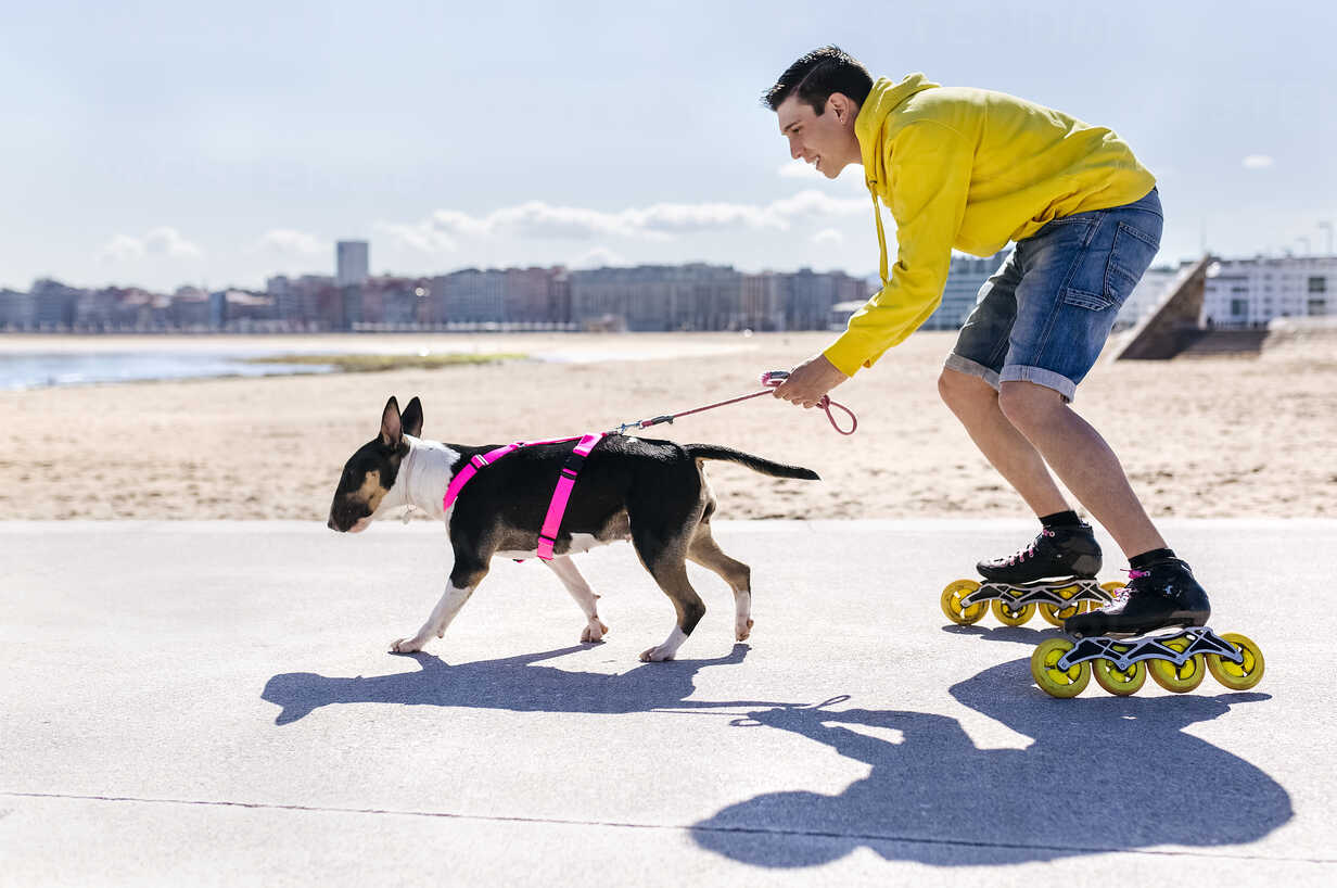 Inline-skater with his bull terrier - MGOF001844 - Marco Govel/Westend61