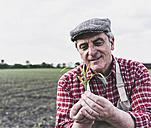 Farmer at a field examining crop - UUF007327