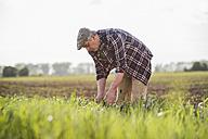 Farmer working in a field - UUF007354