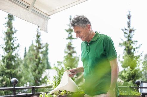 Smiling senior man on balcony watering flowers - DIGF000519