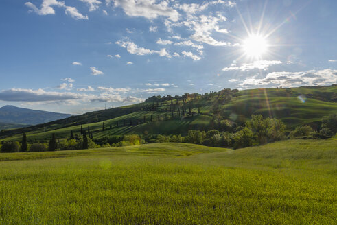 Italy, Tuscany, Val d'Orcia, view to fields and landscape in spring - LOMF000271