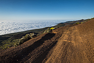 Spain, Tenerife, dirt road in Pico del Teide region - SIPF000503