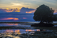 Indonesia, Sumbawa island at sunset - KNTF000286