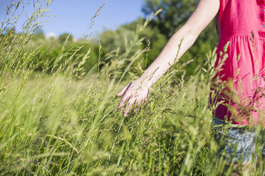 Hand of teenage girl touching grasses on a meadow - MRAF000049