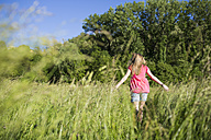 Back view of teenage girl walking on a meadow - MRAF000052