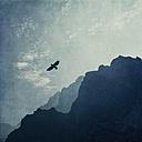 Spain, Canary Islands, La Palma, Caldera de Taburiente, mountain slopes in haze - DWIF000739